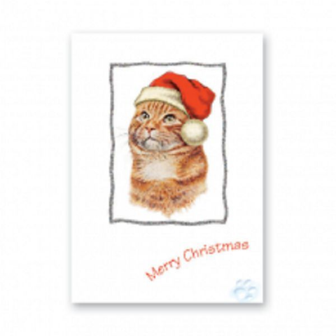 CAT GINGER CHRISTMAS GREETINGS CARD GLITTER